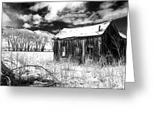 The Old Homestead Greeting Card by Cat Connor