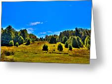 The Old Maple Ridge Ski Area - Old Forge Ny Greeting Card by David Patterson