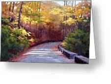 The Old Roadway In Autumn II Greeting Card by Janet King