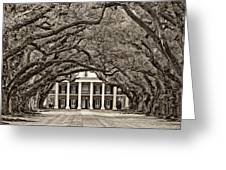 The Old South sepia Greeting Card by Steve Harrington