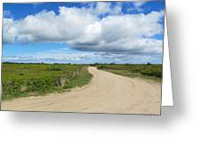 The Path Greeting Card by Cindy Plutnicki