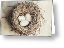 The Perfect Nest Greeting Card by Lisa Russo