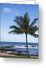 The Perfect Palm Tree - Sunset Beach Oahu Hawaii Greeting Card by Brian Harig