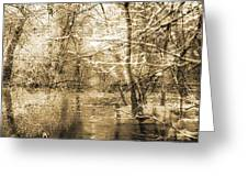 The Pond Greeting Card by Yanni Theodorou