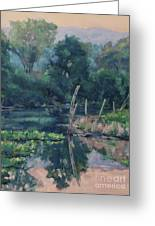 The Pond's Edge Greeting Card by Gregory Arnett