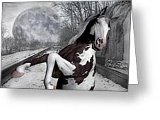 The Pony Express Greeting Card by Betsy A  Cutler