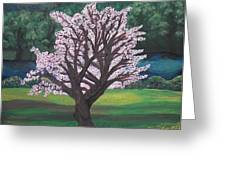 The Promise of the Almond Tree Greeting Card by Cassandra Donnelly