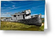 The Pt. Reyes Muted Greeting Card by Bill Gallagher
