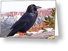 The Raven Greeting Card by Rona Black