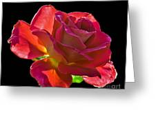 The Red One Greeting Card by Robert Bales