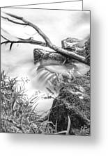 The Riverbank Greeting Card by Christine Smart
