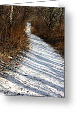 The Road Not Taken Greeting Card by Anne Babineau