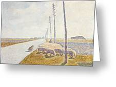 The Road To Nieuport Greeting Card by Willy Finch