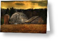 The Rose Farm Greeting Card by Thomas Young