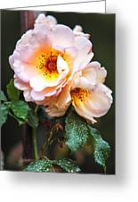 The Rose With Your Name. Park Of De Haar Castle Greeting Card by Jenny Rainbow