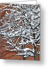 The Snow And The Wall Greeting Card by Frederico Borges