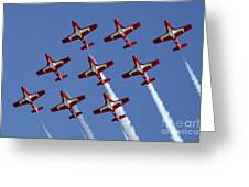The Snowbirds Keeping It Tight Greeting Card by Bob Christopher