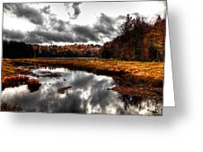 The South End Of Cary Lake Greeting Card by David Patterson