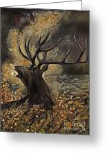 the Stag sitting in the grass oil painting Greeting Card by Angel  Tarantella