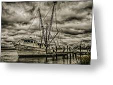 The storm Greeting Card by Steven  Taylor