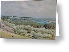 The Terrace At Saint Germain Greeting Card by Alfred Sisley