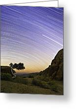 The Test Of Time Greeting Card by Basie Van Zyl