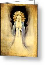 The Virgin Mary Gratia Plena Greeting Card by Cinema Photography