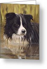 The Water Baby Greeting Card by John Silver