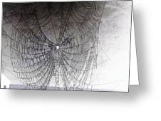 The Web We Weave Greeting Card by Margaret Hamilton