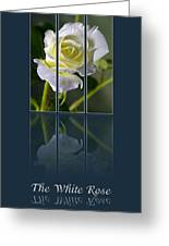 The White Rose Greeting Card by Sarah Christian