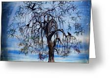 The Wishing Tree Greeting Card by John Edwards