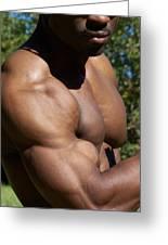The Wonder Of Biceps Greeting Card by Jake Hartz