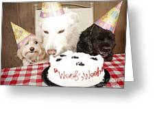 They Are Eating My Cake Greeting Card by Jan Tyler
