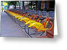 Thirty Yellow Bicycles In Taipei Greeting Card by Tony Crehan