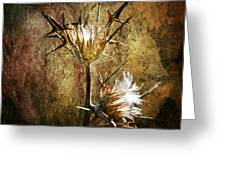 Thorns Greeting Card by Stylianos Kleanthous