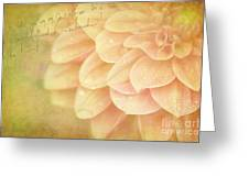 Those Were The Days Greeting Card by Reflective Moments  Photography and Digital Art Images