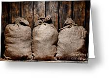 Three Bags In A Warehouse Greeting Card by Olivier Le Queinec