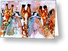 Three Friends Greeting Card by Steven Ponsford