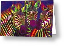 Three Rainbow Zebras Greeting Card by Jane Schnetlage