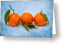 Three Tangerines Greeting Card by Alexander Senin