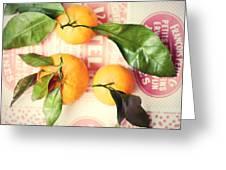 Three Tangerines Greeting Card by Lupen  Grainne