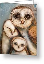 Three Wise Owls Greeting Card by Karin Taylor