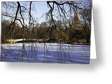 Through The Branches 1 - Central Park - Nyc Greeting Card by Madeline Ellis