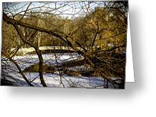 Through The Branches 2 - Central Park - NYC Greeting Card by Madeline Ellis
