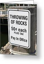 Throwing Rocks Greeting Card by David Freuthal