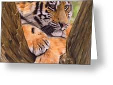 Tiger Cub Painting Greeting Card by David Stribbling