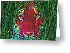 Tiger In The Grass Greeting Card by Jane Schnetlage
