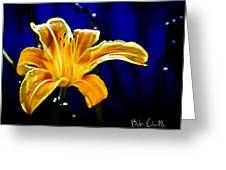 Tiger Lily On Waters Edge Greeting Card by Bob Orsillo