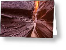 Tight Squeeze Greeting Card by Dustin  LeFevre