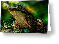 Time Spent With The Frog Greeting Card by Bob Orsillo